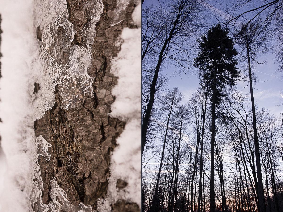 Trauung im Winter bei einer Winterhochzeit im Taunus am Jagdschloss Platte bei Wiesbaden im Rhein-Main-Gebiet mit der freien Rednerin Friederike Delong, auch genannt die Trautante, Rednerin für Hochzeiten